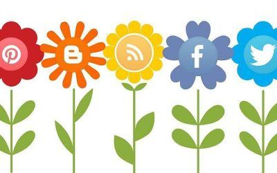 Conoce la mejor red para realizar una campaña de social media
