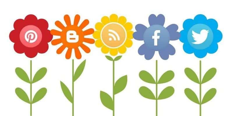 la red ideal campaña de social media - servicios softcorp-compressed