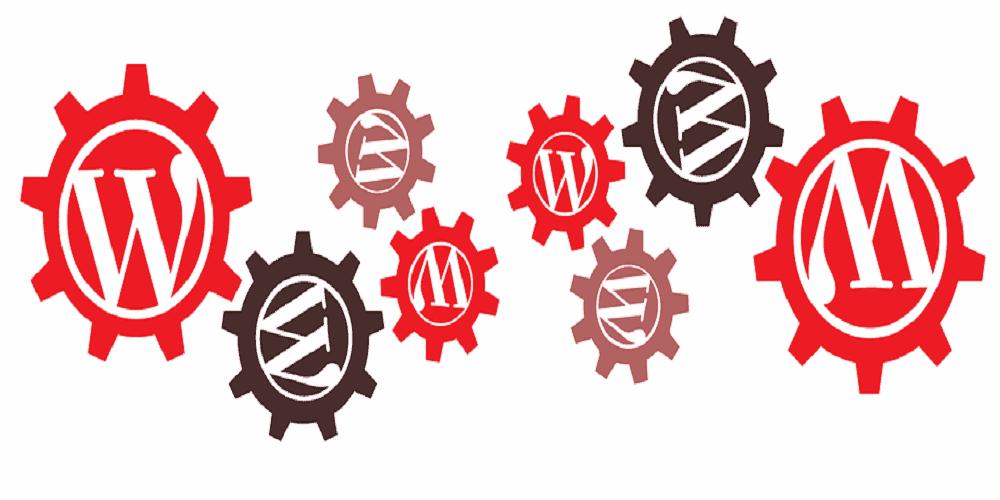 no actualizar página web en wordpress - servicios softcorp